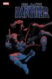 Black Panther #17