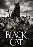Black Cat DVD