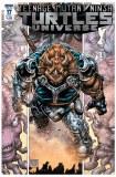 TMNT Universe #17 Cvr A