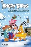 Angry Birds Comics Quarterly Cvr A