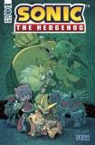 Sonic the Hedgehog #27 Cvr B Gray Graham