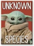 Mandalorian Unknown Species Magnet