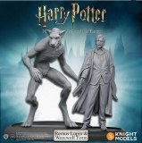 Harry Potter Miniatures Adventure Game Remus Lupin and Werewolf Form Expansion