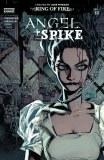 Angel & Spike #15 Cvr B