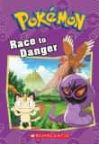 Pokemon Race to Danger Chapter Book