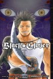 Black Clover Vol 06