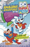 DC Super Pets Cave of Kryptonite TP