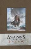 Assassins Creed IV Black Flag Journal