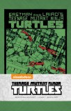 Teenage Mutant Ninja Turtles Classic Ruled Journal