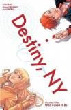 Destiny NY TP Vol 01 Preitano