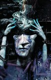 Sandman TP Vol 05 A Game of You New Ed