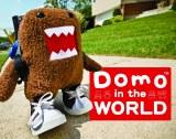 Domo In the World Board Book