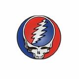 Grateful Dead Steal Your Face Logo Enamel Pin