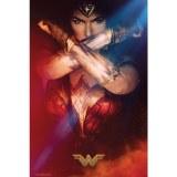 Wonder Woman Crossed Arms Poster