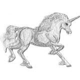 Unicorn Running Patch