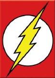 Flash Logo Magnet