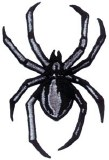 Black Widow Spider Black Patch