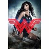 Wonder Woman Movie Logo Poster BvS