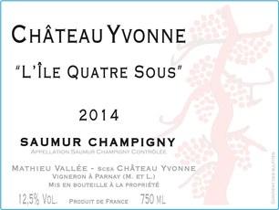 Chateau Yvonne Saumur Champigny 2019