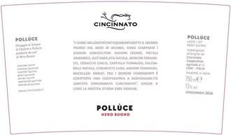 Cincinnato Polluce Nero Buono 2017