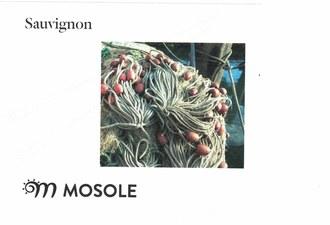 Mosole Sauvignon 2017