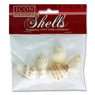 Craft Shells Conch 5cm 8 Pack Icon