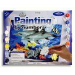 Painting By Numbers Dolphins Junior