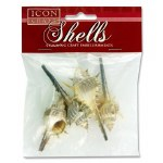 Craft Shells Whelk 7cm 5 Pack Icon