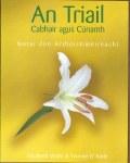 An Triail Cabhair agus Cunamh Notes Ed Co