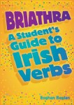 Briathra Student Guide to Irish Verbs Gill and MacMillan