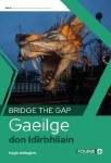 Bridge The Gap Transition Year Irish Folens