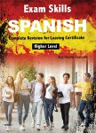 Exam Skills Spanish Leaving Cert Mentor Books