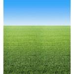 Fadeless Roll 3.6M Summer Horizon