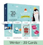 Vocabulary Cards Winter 4schools.ie
