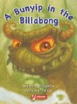 Phonics Big Books Level 3 Billabong