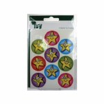 IVY Motivational Star Stickers 27 Pack