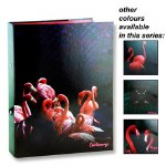 Emotionery A4 Ring Binder Tropical Twilight