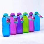 Sistema Water Bottle 460ml