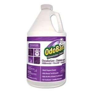 OdoBan Conc Lavender