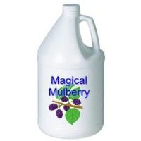 Magical Mulberry Conc Deodorizer (1gl)