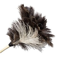 "Feather Duster 13"" Ostrich"