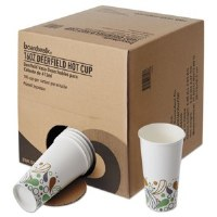 Paper Hot Cups Disp Pack 16oz