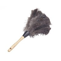 Feather Duster 20""
