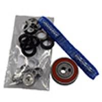 KaiVac Pump Rebuild Kit