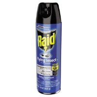 Raid Flying Insect Killer (12)