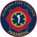 """Paramedic Lapel Pin 3/4"""""""