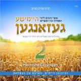 Heimish Gezangen Volume 2