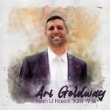 Avi Goldwag -Yesh Li Hakol