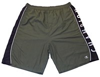 Champion Label Board Swim Short