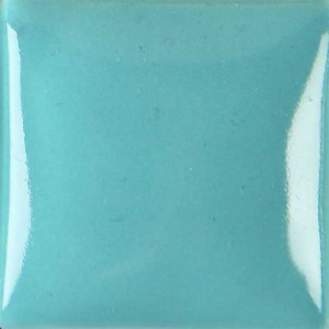 1079 Turquoise Envision 4oz